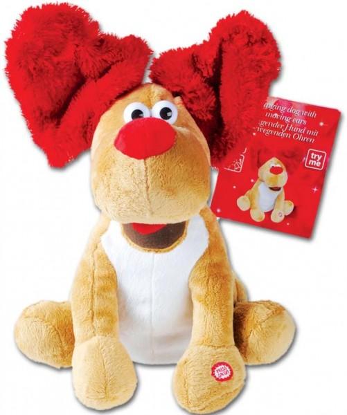 Singender und tanzender Valentins Hund