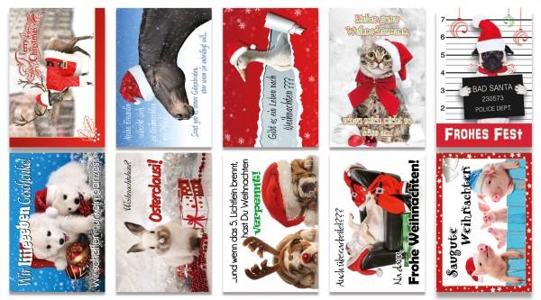 Weihnachtskarten Tiere.Qlovesd Weihnachtskarte Tiere
