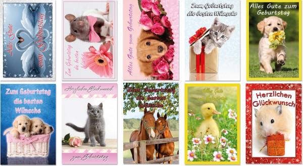 QlovesD Geburtstagskarte Tiere